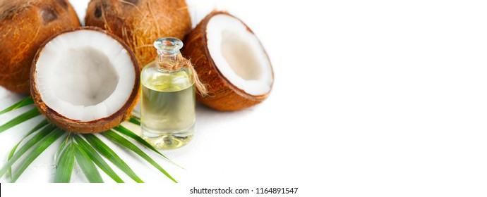 Coconut oil in a bottle with coconuts and green palm tree leaf isolated on a white background. Border design. Wide angle. Healthy Food, skin care concept. Vegan food