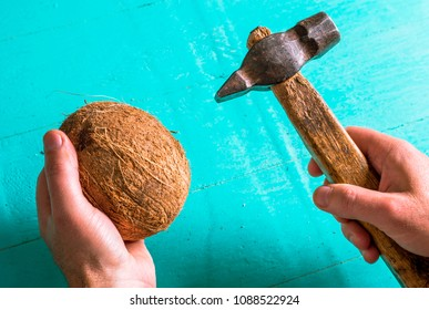 Coconut and an old hammer in the hands. Cracking coconut
