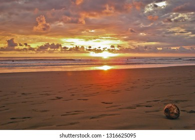 Coconut on the beach at sunset time in Costarica