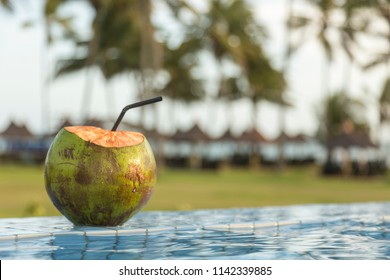 coconut on the edge of the tropical pool at sunset in a relaxing hotel