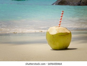 Coconut on the sand and exotic