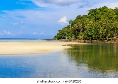 Coconut palm tree with Beautiful Tropical sand beach and seashore,blue sky background
