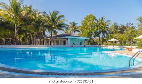 Coconut Palm tree swimming pool in tropical resort - Summer nature scene.