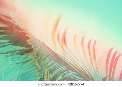 Coconut palm tree under blue sky. Vintage background. Travel card. Retro toned.