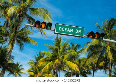 Coconut palm trees along Ocean Drive in Miami Beach.