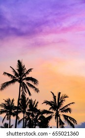 Coconut palms on a colorful sunset in tropical Bali