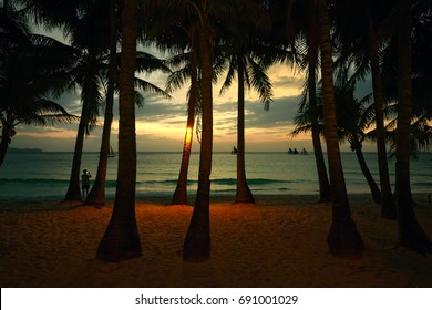 Coconut palms on sand beach in tropic on sunset. Island Boracay, Phillipines
