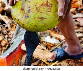 Coconut peel with knife