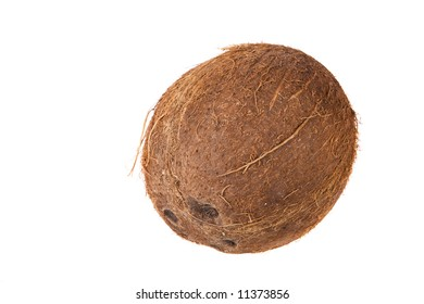 A coconut seed on a white background