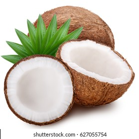 Coconut set leaves Isolated on white background clipping path
