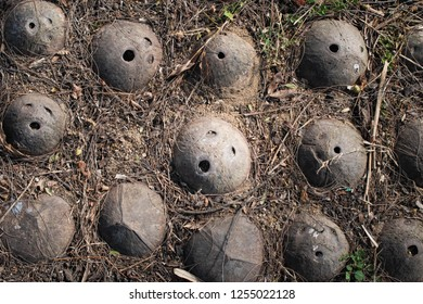 Coconut shells with horrible screaming face on soil background. Concept of negative mood, feeling,Halloween day, Mental Health.