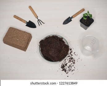 Coconut substrate for soil. Pressed coconut substrate briquette.
