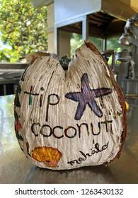 Coconut Tip Jar sitting on a restaurant counter