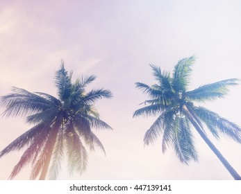 Coconut tree on the beach and sun lighting, with color effect.