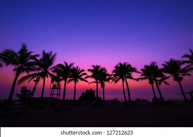 Coconut tree silhouette on paradise sunset, twilight on the beach.