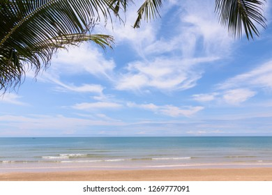 Coconut trees against blue sky. Palm trees at tropical coast.