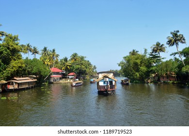 Coconut trees and houseboat - Alleppey backwaters-Kerala