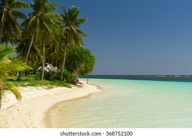 coconut trees on a sunny white sand beach with crystal clear blue sea on a south pacific island