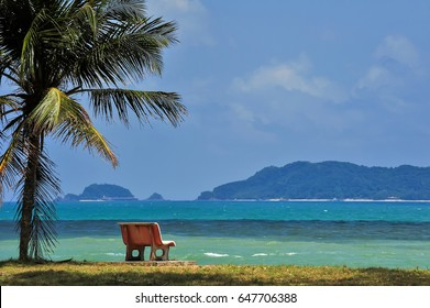 coconut trees over the ocean cement chair with a peaceful place watching the sunrise.(soft effect)