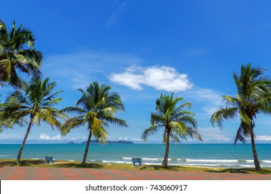 coconut trees over the ocean cement chair with a peaceful place watching the sunrise.(selective focus), located at Kelulut Beach, Marang Terengganu, Malaysia.