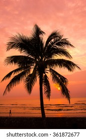 Coconut trees with sunset  background on the beach.