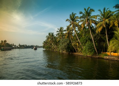 Coconut trees and sunset sky at the backwaters of Alleppey, Kerala
