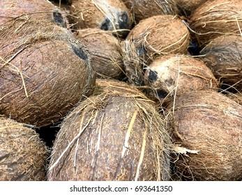Coconuts background; landscape