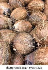 Coconuts background; portrait