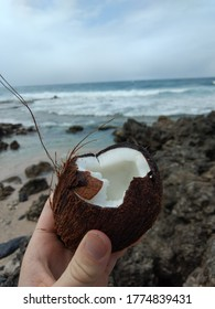 Coconuts can be broken and opened