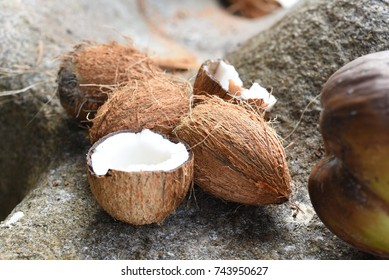 Coconuts, Seychelles