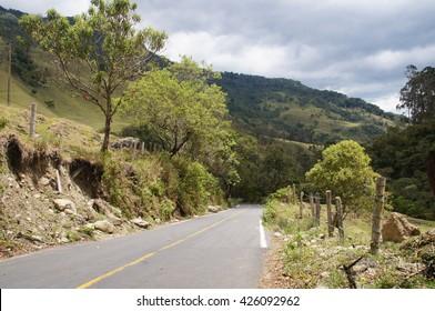 Cocora valley near Salento, Colombia