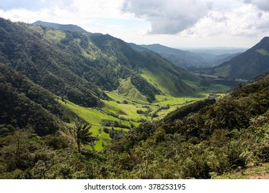 Cocora Valley, one of the most beautiful landscape of Colombia, which is nestled between the mountains of the Cordillera. Cocora Valley is the gateway to Parque Nacional Natural de los Nevados.