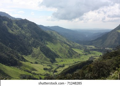 Cocora Valley, which is nestled between the mountains of the Cordillera Central in Colombia. Predominates in the majestic surroundings of Quindio wax palm, Colombia's national tree growing to 60 m.