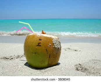 cocunut on a  beautiful Caribbean beach
