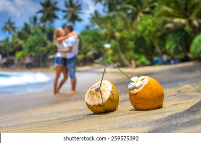 Cocunut on a tropical beach in Sri Lanka