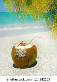 Cocunut with straws on a  beautiful Caribbean beach shoreline  with palm tree