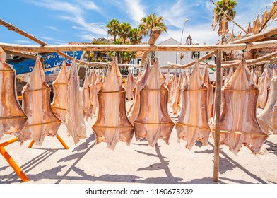 Cod dries after catch on the ocean shore. Madeira. Portugal