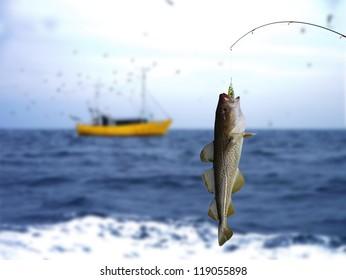 cod on fishing-rod on background of sea