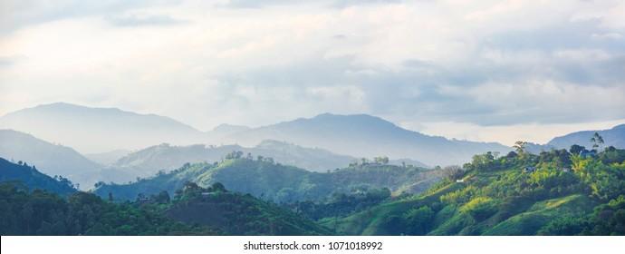 paisaje de la zona del café en Colombia
