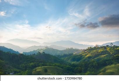coffee area landscape in colombia