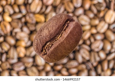 Coffee bean close-up on a blurry background of coffee beans. Soaring effect.