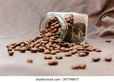 coffee bean on gray background