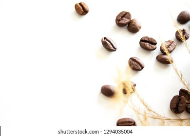 Coffee beans background isolated with dried asparagus fern plant
