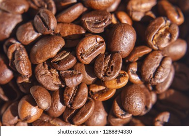 Coffee Beans in a Close up