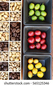 Coffee beans and fresh berries beans background
