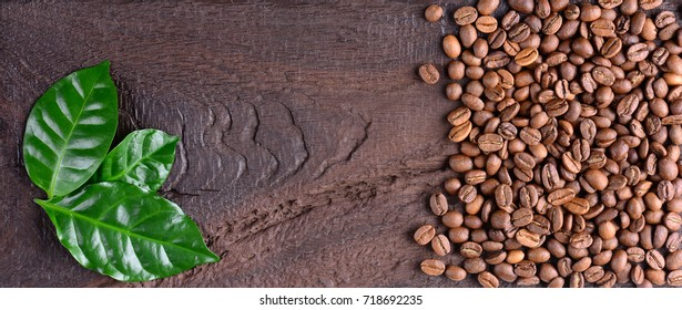 Coffee beans and green leaves of coffee plant on an old wooden desk. Top view of coffee beans with a copy space for your text.