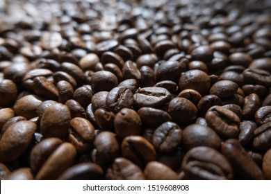 Coffee beans, low angle close up with shallow focus / depth of field.