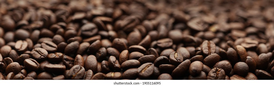 Coffee beans. Macro coffee beans background. Selective focus. Roasted seeds Shallow depth of field. Panoramic Hi-res banner.