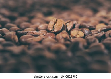 Coffee beans pile on the background of ground coffee