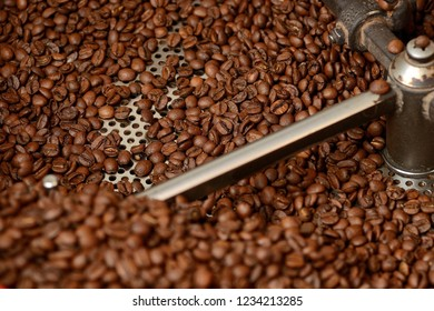 coffee beans in the roaster